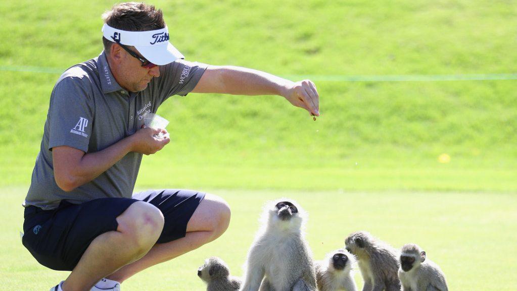 Ian Poulter Nadbank Golf Challenge