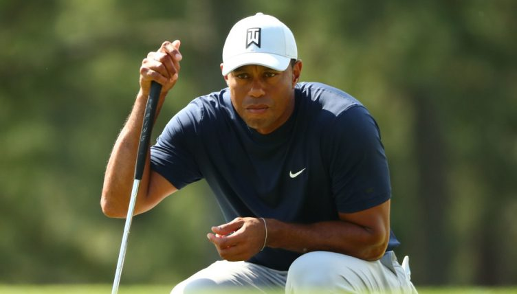 Tiger Woods assessing shot